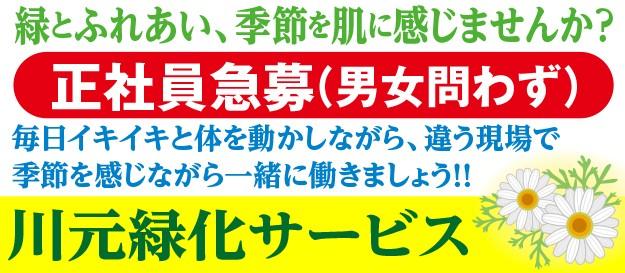 川元緑化サービス